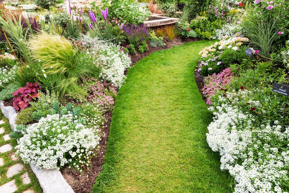 droga do ogrodu wokol ktorej jest pelno pieknych kwiatow